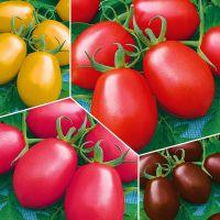 Итальянские томаты, аромат-ароматизатор