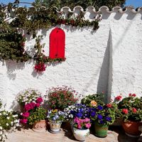 Сады средиземноморья, аромат-ароматизатор